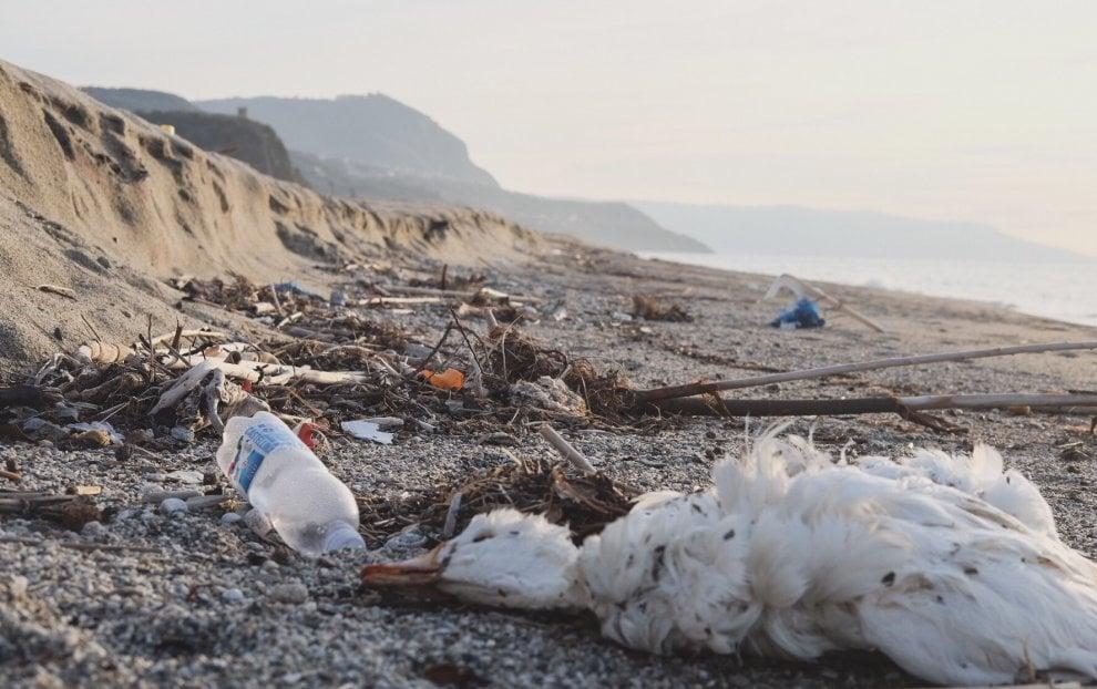 cosa fare per non inquinare il mare