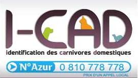 icad-fichier-national-felin
