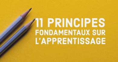 11 principes fondamentaux sur l'apprentissage