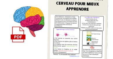 Quelques informations essentielles à donner aux enfants à propos de leur cerveau et de l'apprentissage