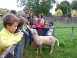 les ce2cm1 de l'école saint pierre à la ferme