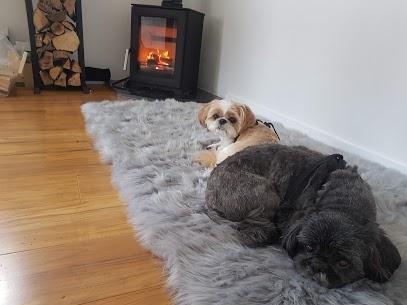 Dogs and Log burner