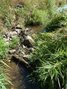 L'Arconce au Rousset (71) en période d'étiage Août 2015