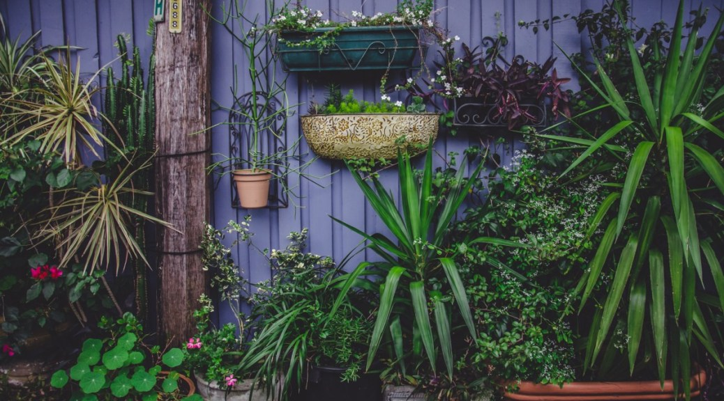 image: outdoor garden containers.