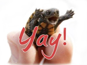 image: yay!