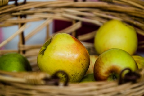 Conversation Piece: Every Apple Tells a Story, Fabrica Gallery, Brighton, 9th August 2016