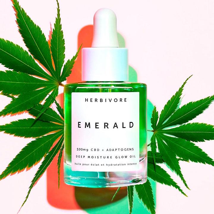 cannabis portada 3
