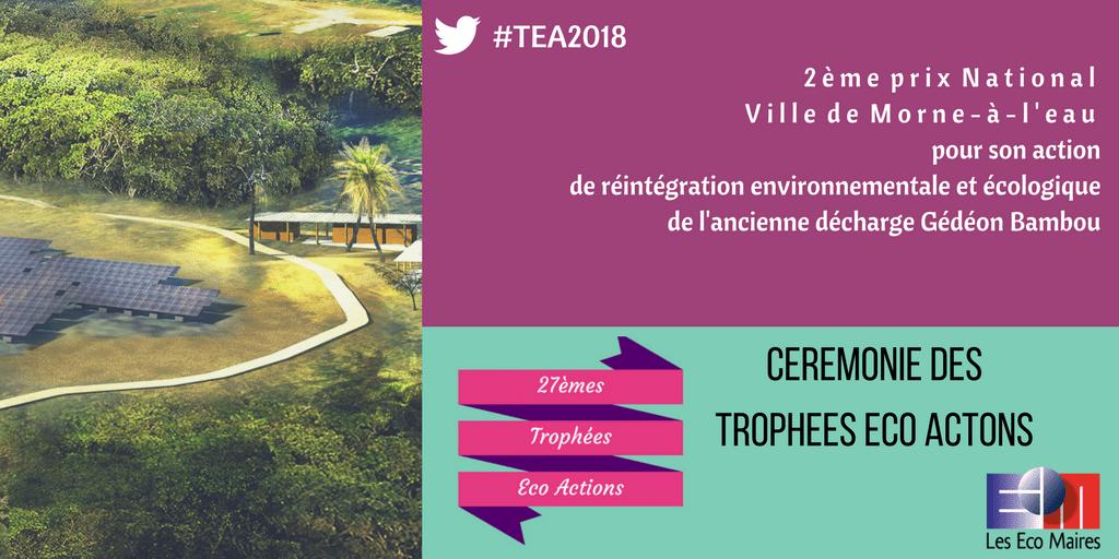 Ville de Morne-a-l'eau 2eme Prix TEA CANVA 6