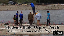 March 25, 2013 Students Build Osprey Perch at Malibu Lagoon.  The Student Conservation Association's volunteers erect the Osprey Perch at Malibu Lagoon.  NOTE: Click on image to see video.