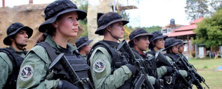 Mexico's Avocado Farming Soldiers