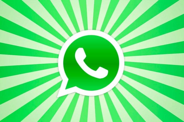 ¡Lo hizo!: WhatsApp Business confirma la llegada de las primeras empresas a la app