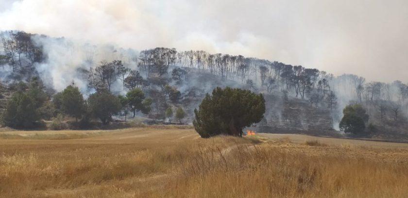 Arde el monte de Perdiguera y Leciñena