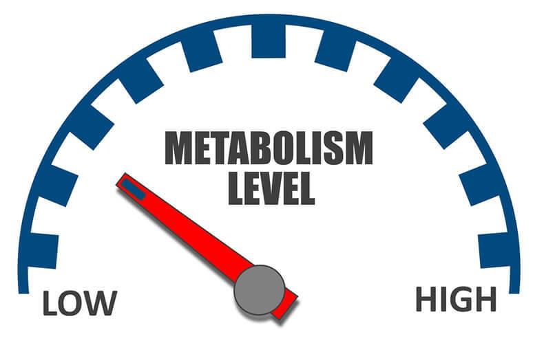 Metabolismo: cosa è e come migliorarlo