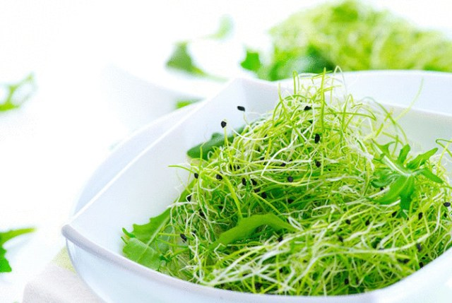 Биогенная еда — самый дешевый способ борьбы со старением