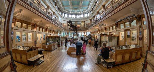 Бесплатное посещением музеев