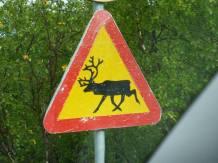 Ware the Reindeers!