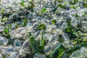 glass bottle recycling center in perris
