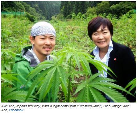 japon drogues