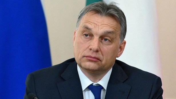 il s'agit d'un système de fraude organisée créé par les entreprises autour du gendre du Premier ministre hongrois Viktor Orbán, István Tiborcz