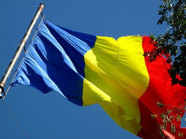 Des données d'organisations internationales telles que l'OCDE ont montré qu'en 2015, quelque 3,5 millions de Roumains vivaient à l'étranger dans d'autres pays de l'UE.