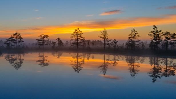 Põhja-Kõrvemaa_Nature_Reserve._Estonia.