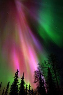 Kakslauttanen Northern_lights - 685 x 1024