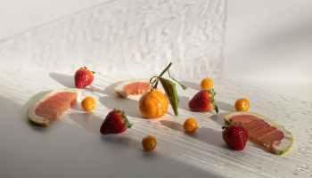 Sustainable organic vegetable gardening with organic matter