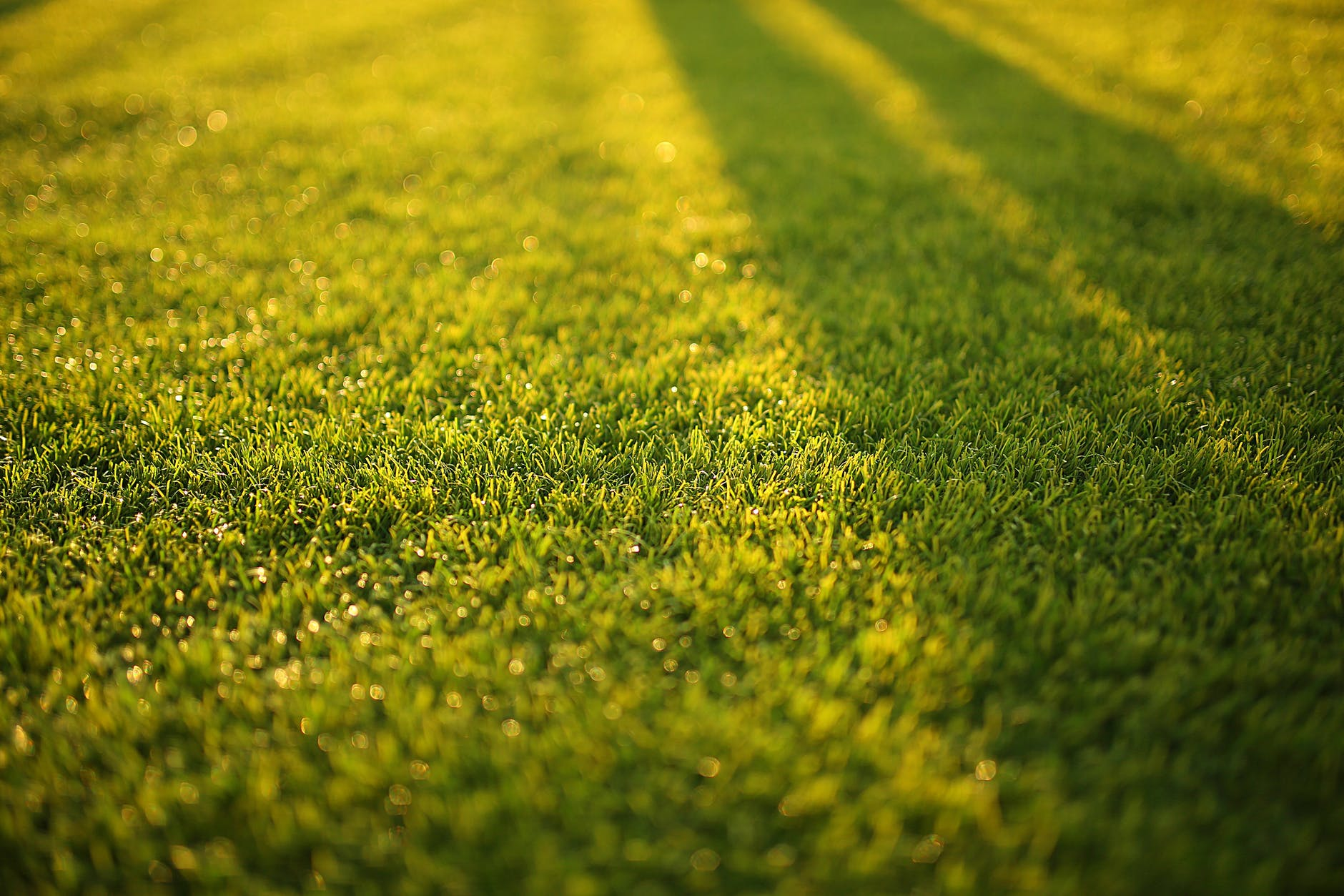 Lawn Mowers-lawn care & equipment