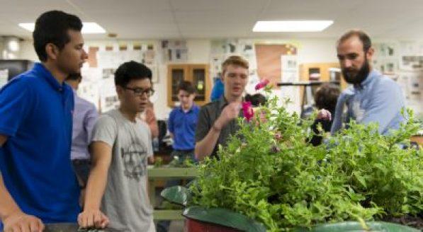 eco-literacy, design thinking, and social entrepreneurship