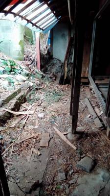 庭の木片や瓦礫が片付いた様子