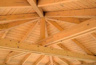 Custom Exposed Roof Trusses