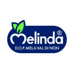 Melinda - partner gp ecorun
