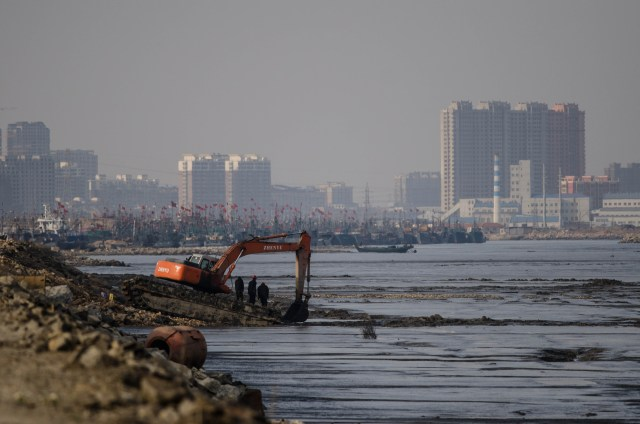 In China alone more than 1.2 million hectares of wetland reclamation has taken place in the last 50 years, perhaps accounting for more than 5 per cent of the worlds' tidal wetlands. Credit: Nick Murray