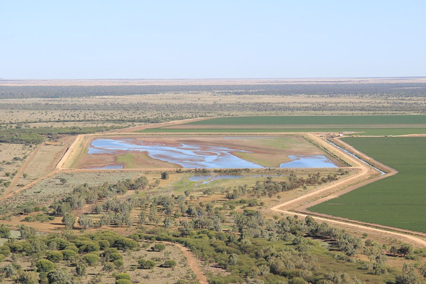 Aerial photo of a large rectangular earth dam among crops and trees