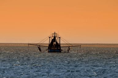 trawler in sunset