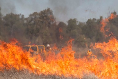 Grass on fire with firefighters in background