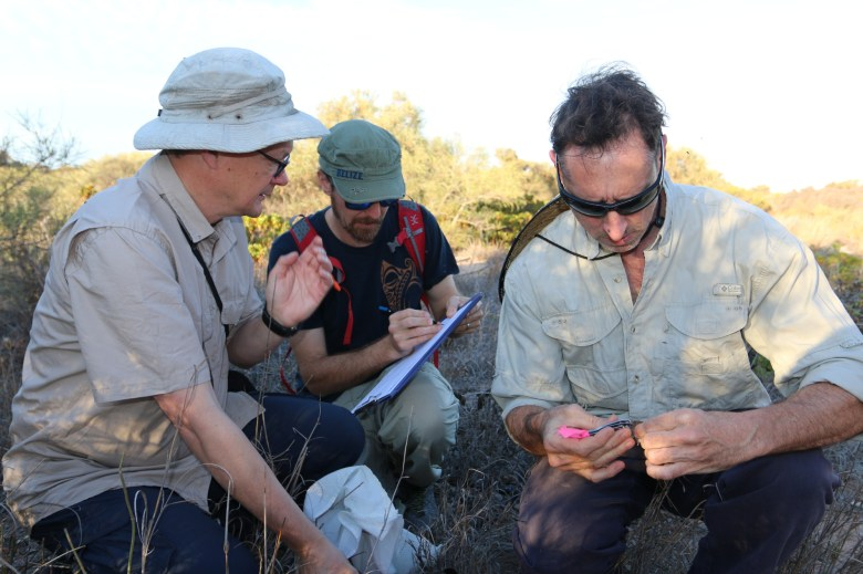 three men crouching in bushland with one man taking notes