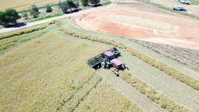 Crop harvesting