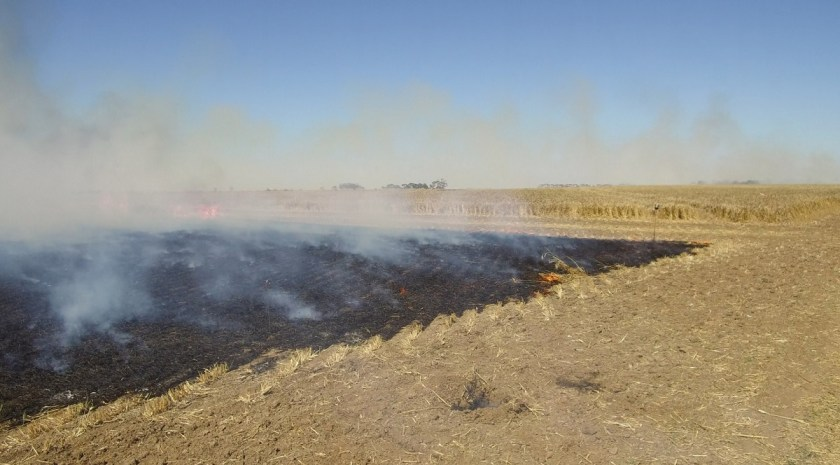 Fire on farmland