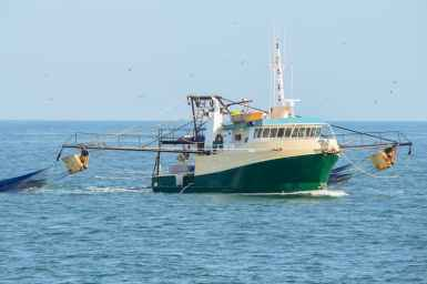 Wide shot of a prawn trawler