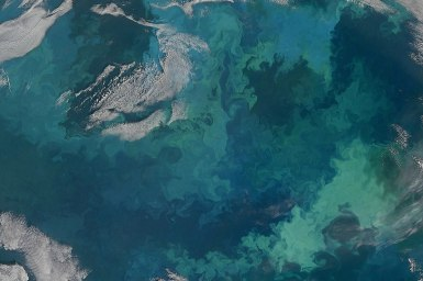 A satellite image of the sea - a hue of green and blues.