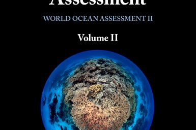 The front cover of the Second World Ocean Assessment, showing the title, volume and a fisheye image of divers swimming over a coral reef.
