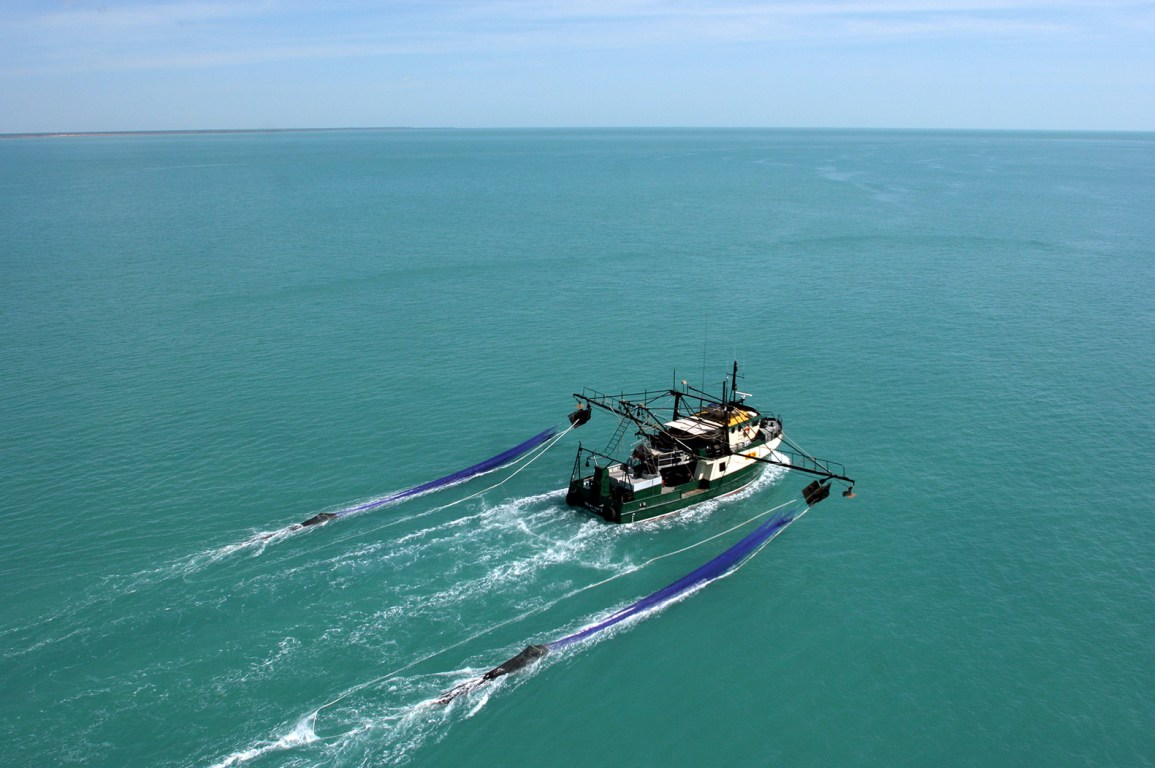 aerial view of prawn trawler out at sea