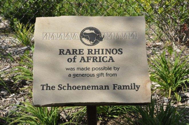 exhibit-rare-rhinos6