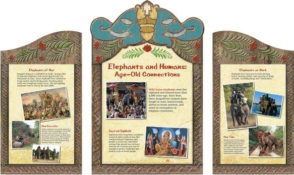 exhibits-elephant-15