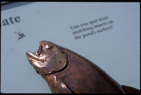 sculpture-trout