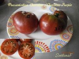 томат Cherokee Purple