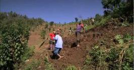 Film - Inspiration from huge ecosystem restoration and agro- forestry projects