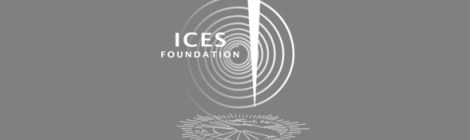 International Centre for Earth Simulation (ICES) Foundation's Expert Committee - Trust's Peter Head appointed