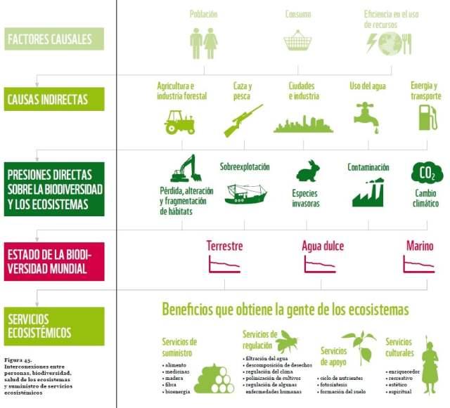 biodiversidad beneficios